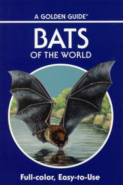 Bats Golden Guide