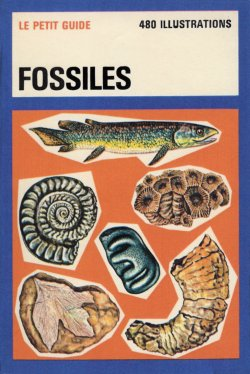French Fossils Le Petit Guide