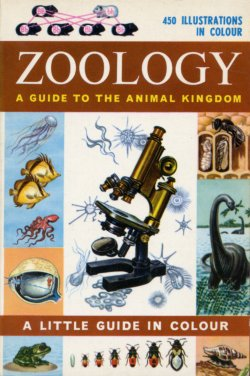 Zoology Little Guide In Colour