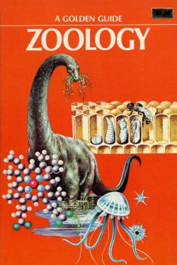 Zoology Golden Guide