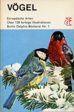 Seagulls Deutsch